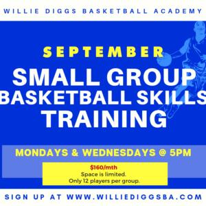 DMV Small Group Basketball Training